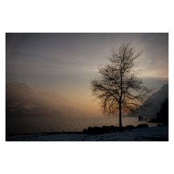 Lake_Brienz