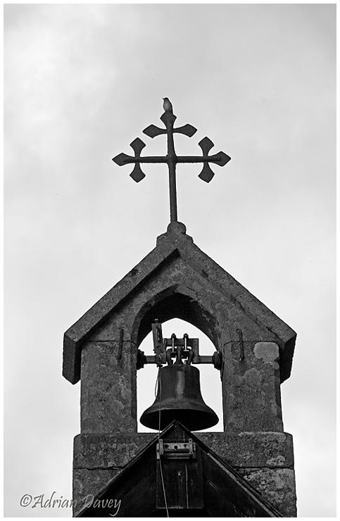 Spotted Flycatcher on Church weathervane