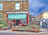 Herrings flower display, Mosborough, Derbyshire