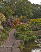 Lea Gardens
