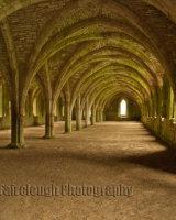 The Monks' Cellarium - Fountains Abbey