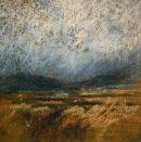 """""""Achill Island bog"""""""