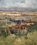 """Summer Bogland - Connemara"""