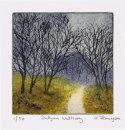 Dalgan Walkway
