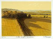 Fields of Gold, Dunamaise.
