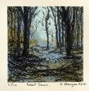 Forest Dawn.
