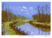 Grand Canal, Courtwood