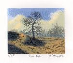 Tara Oak