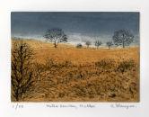 Winter Bracken, Wicklow
