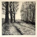"""Winter Walk"" Print"