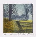 Winter Woodland Walk
