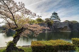 """""""Osaka Castle"""""""