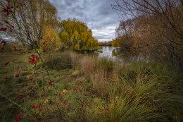 Last of Autumn