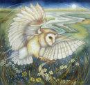 Ghost Owl (print)
