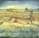 Hare and Primroses (Giclee print)