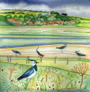 Salthouse Lapwings (print and card)