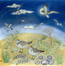 Sleeping gulls (print and card)