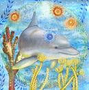 Dolphin (NNUH)