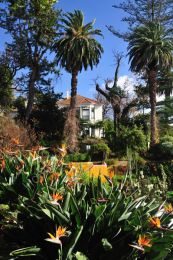 Madeira's Botanic Garden