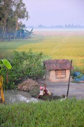 Dawn in a Sunderbans village