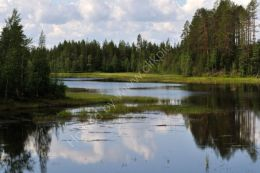 Typical Finnish landscape