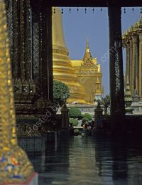 Royal Temple reflections