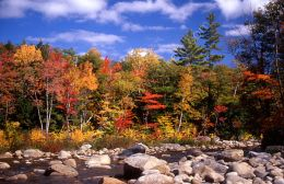 Autumn on Saco River