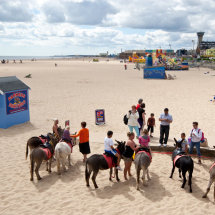 Donkeys-on-Great-Yarmouth-Beach