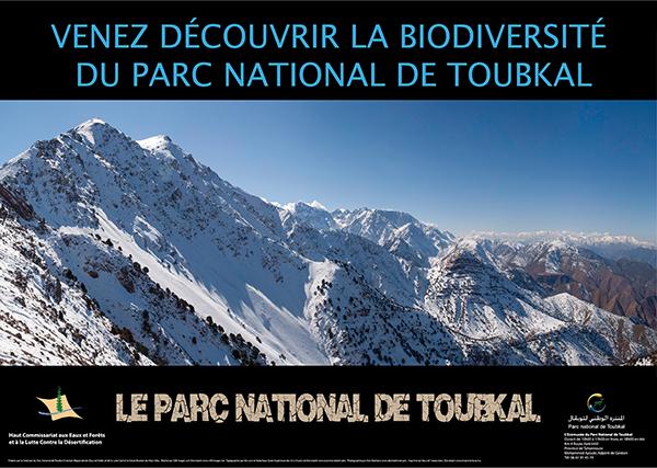 Toubkal National Park Poster Landscape