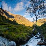 Tree and Stream Glen Nevis Autumn 1