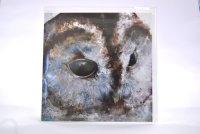 Hooty greetings card (square)