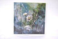 Daisy study I greetings card (square)