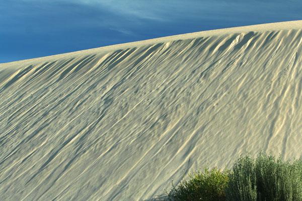Ceduna Sand Dune