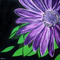'Purple Star' SOLD