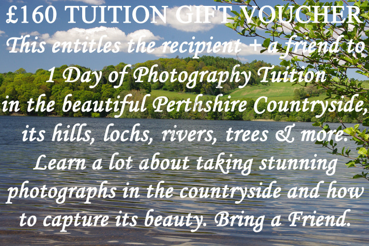 £160-Bring-a-Friend-Tuition-Voucher