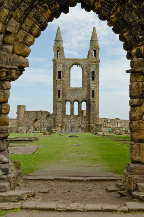 AANWS St Andrews Cathedral 3636