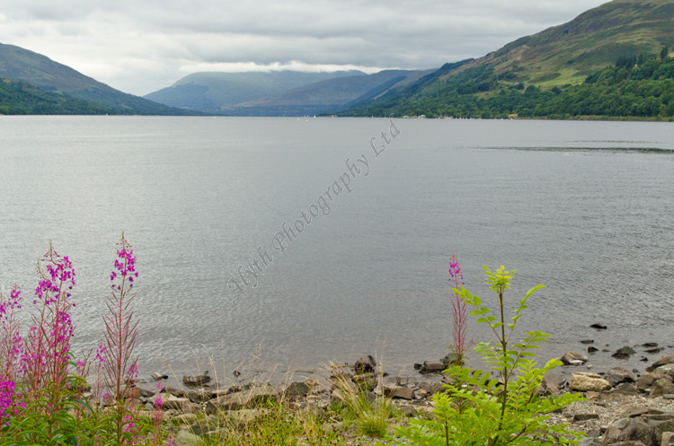 AANWW Loch Earn with Mountain Mist 3799