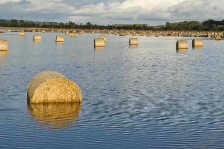 AANWA Flooded Bales Meigle Perthshire 4434
