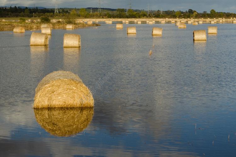 AANW River Isla Floods Field Perthshire A4456