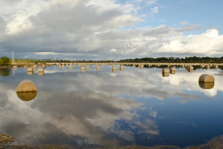 AANWA Bales in Flood 4484