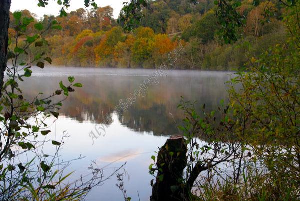 AAPWW Clunie Loch Mist 3789 X2