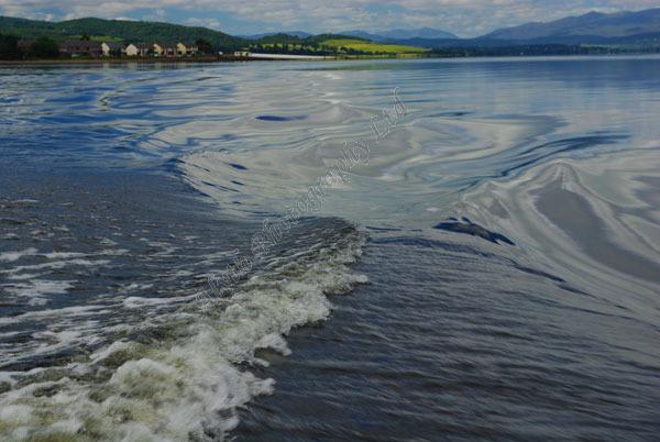AAPWW Waves Behind Boat 2867