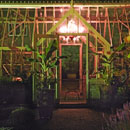 Cowdray Walled Garden at night