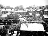 snowy rooftops, Sheffield