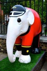 Elephant Chelsea Pensioner