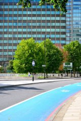 cycle track and trees, Millbank