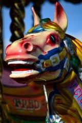 laughing carousel horse