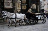 horse-drawn carriage, Vienna
