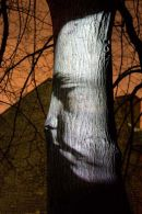 Oursler Head Projected onto Tree