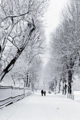 couple in snow, Greenwich